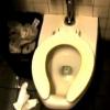 Pozor na veřejné záchody