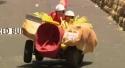 Redbull káry 2011 - Brazílie
