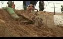 Motocrossový bahnozávod