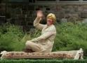 Nachytávka - Létající koberec