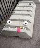 GALERIE - Tohle že je vandalizmus? 2
