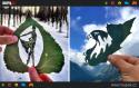 GALERIE - Vyřezané obrazy v listí