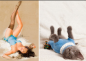 GALERIE - Kočky napodobují fitness holky
