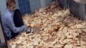 GALERIE – S jídlem se dají dělat věci
