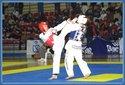 Taekwondo - 540 kick