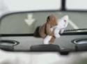 Kvalitní hudba v autě [reklama]