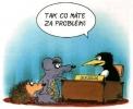 OBRÁZKY - Kreslené vtipy LXVIII.