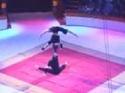 Akrobatické vystoupení - Duo Iroshnikov