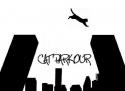 Kočičí parkour