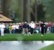 Golf - borec Vijay Singh