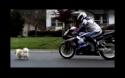 Originální reklama - Suzuki
