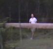Vetřelec v lese