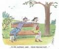 OBRÁZKY - Kreslené vtipy CCXVI.