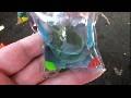Živá želva jako klíčenka