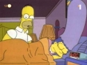 Simpsonovi - Homer kormorán