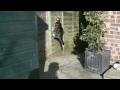 Slow motion – skok a lezení kočky