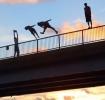 Borci - freestyle skoky do vody