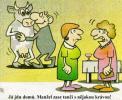 OBRÁZKY - Kreslené vtipy CCCLIX.