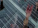 Zombie v NY [nachytávka]