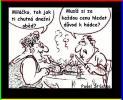 OBRÁZKY - Kreslené vtipy CDLXVII.