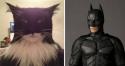 GALERIE - Kočky jako slavní