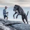 GALERIE – Největší psi svého druhu
