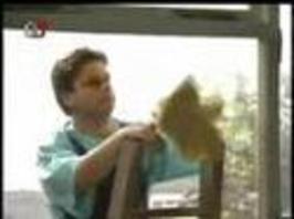 Hale & Pace - Umývání oken