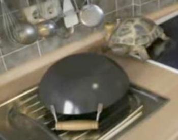 Soulož v kuchyni