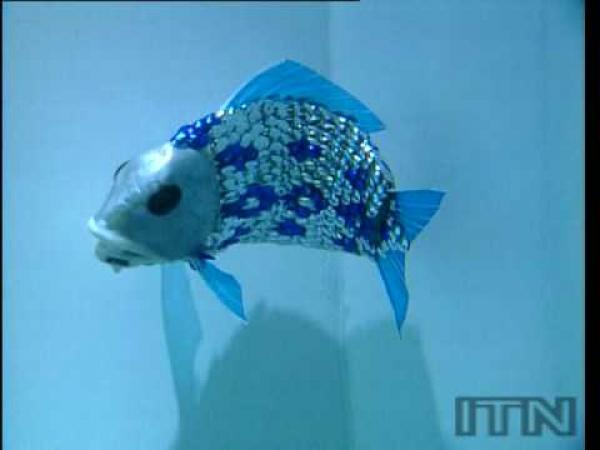 Robot - ryba