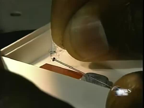 Mikro sochař - precizní práce
