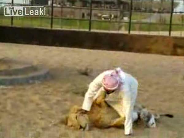 Odvážný Arab a lev