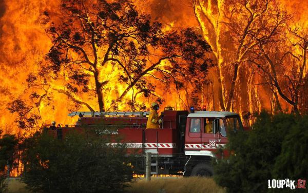 OBRÁZKY - Austrálie v plamenech