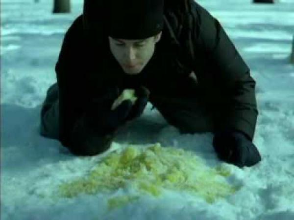 Žlutý sníh [reklama]