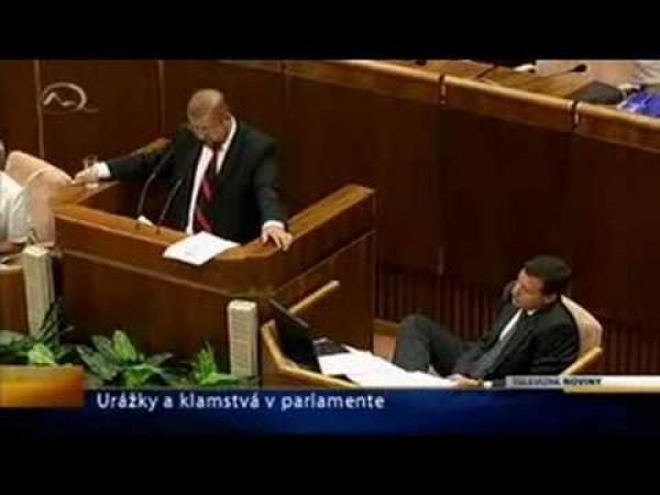 Slovenský parlament - taky síla