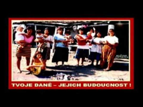 Volební videoklip - Národní strana