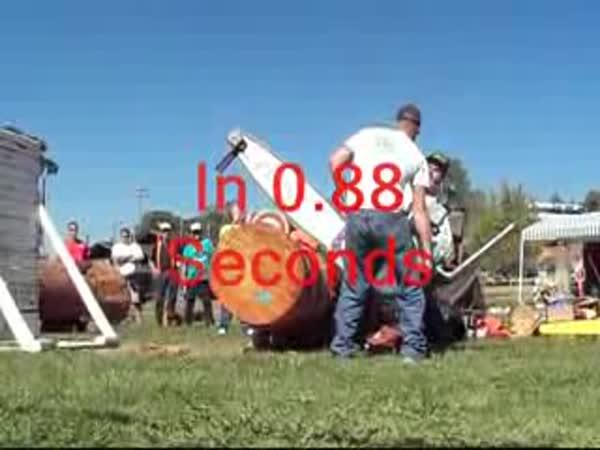 Výkonná motorová pila v akci