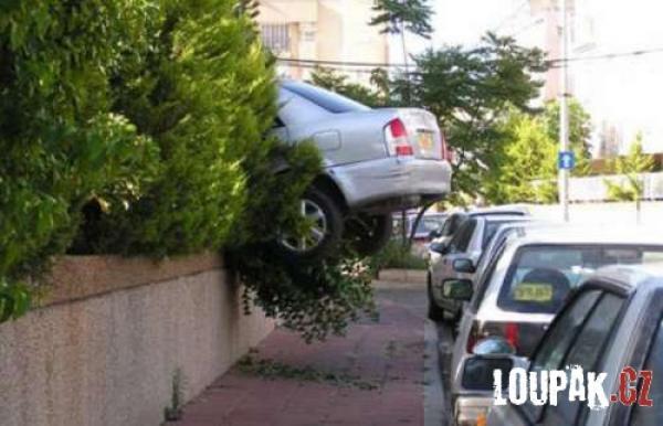 OBRÁZKY -  Když parkují ženy