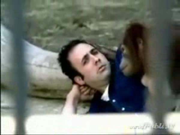Probuzení po akci [reklama]