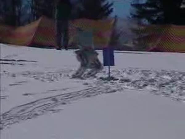 Robot umí lyžovat