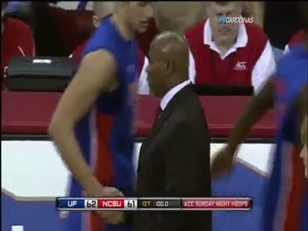 Basketbal - vítězný koš