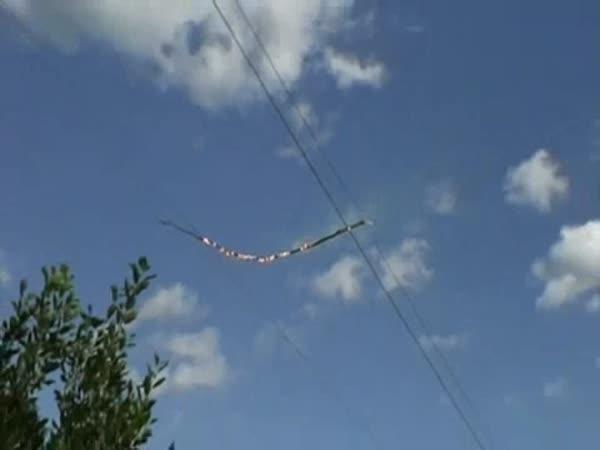 Větev na drátech vysokého napětí