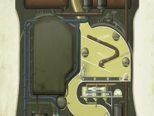 Lidské tělo - Obrovská továrna