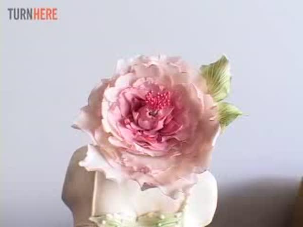 Neuvěřitelné originální dorty