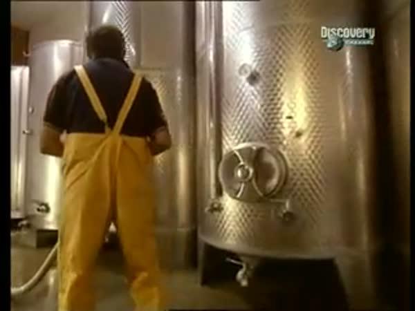 Jak se dělá víno