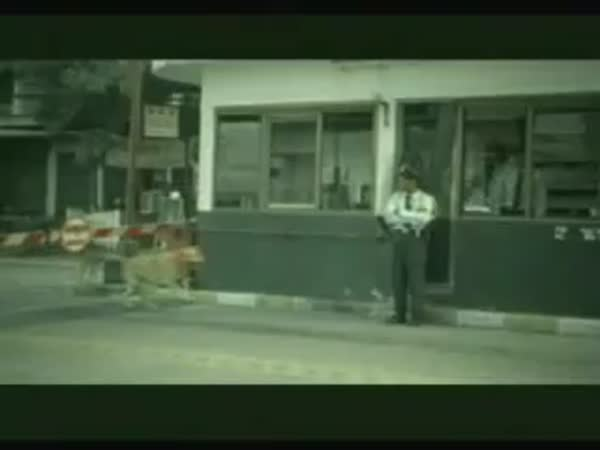 Psí nevěra a kvalitní pneumatiky [reklama]