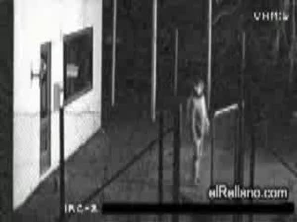 Největší blbci - zloději [kompilace]