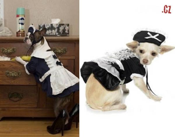 OBRÁZKY - Originální kostýmy pro psy