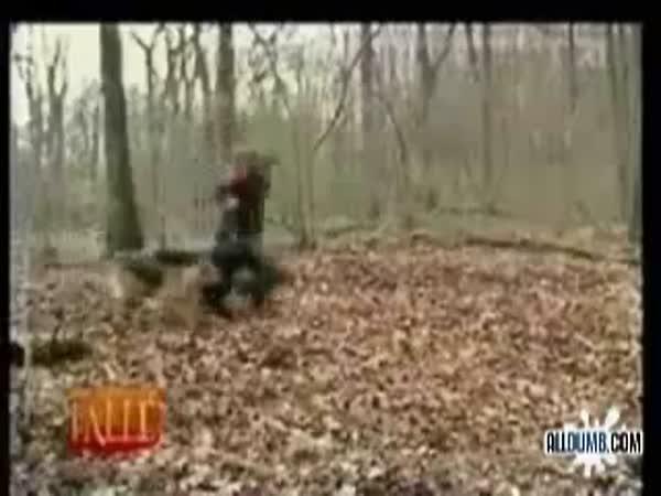 Krutá nachytávka v lese