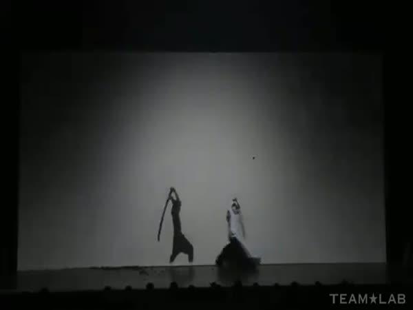 Samuraj bojuje se stínem
