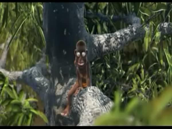 Animace - Černoch vs veverka